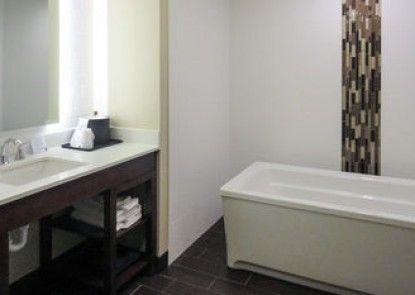 Comfort Suites Loveland