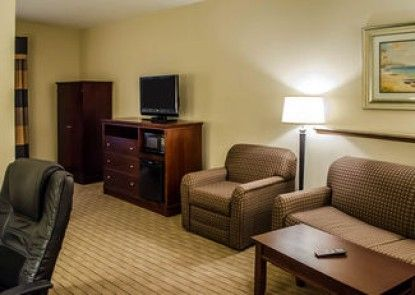 Comfort Suites Mobile