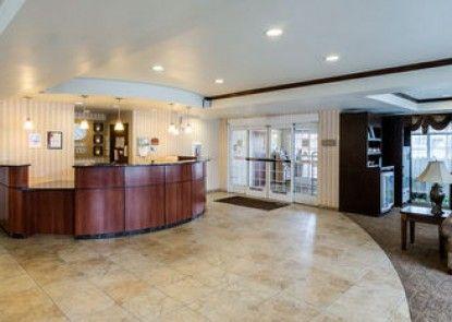 Comfort Suites Seaford