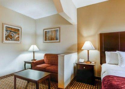 Comfort Suites Warner Robins
