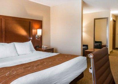 Comfort Suites Wixom