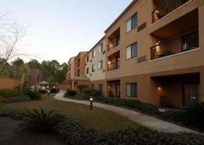 Courtyard Tuscaloosa by Marriott
