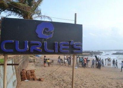 Curlies Zulu Land