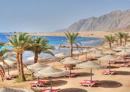 Dahab Red Sea