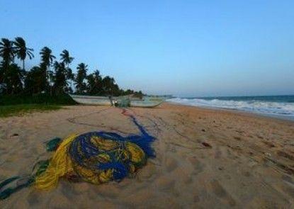 Darwins Beach Resort