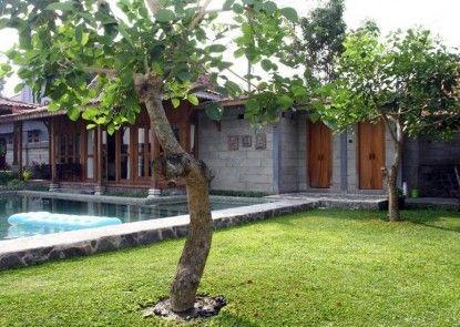 D Asti Guest House and Living Pemandangan