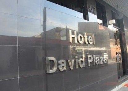David Plaza Hotel