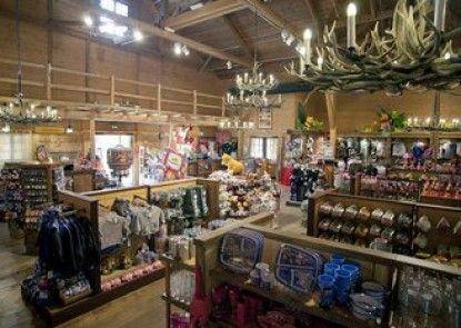 Disney\'s Davy Crockett Ranch