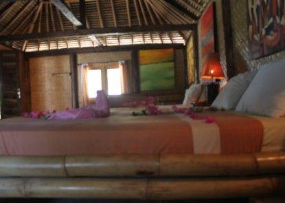 Dolphin Lodge Sekotong Kamar Tamu