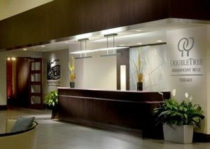 DoubleTree by Hilton Chicago - Magnificent Mile Teras