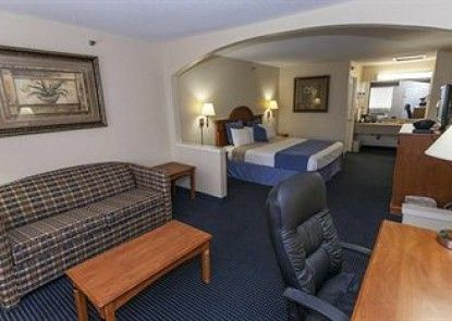 Downtowner Inn and Suites Hobby