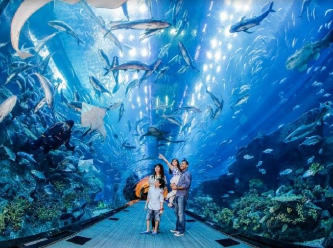 Dubai 5-day Unlimited Attractions Pass