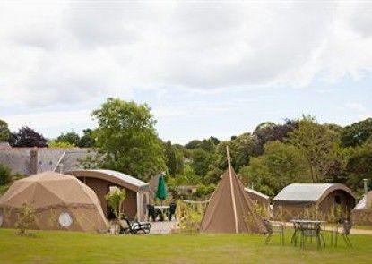 Durrell Wildlife Camp