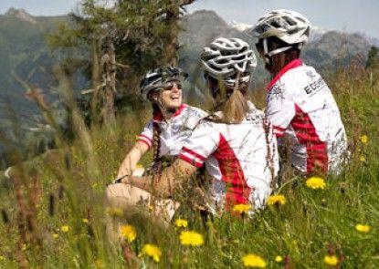 Edelweiss - Der Stern in den Alpen