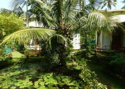 Eden Garden Ayurvedic Health Retreat