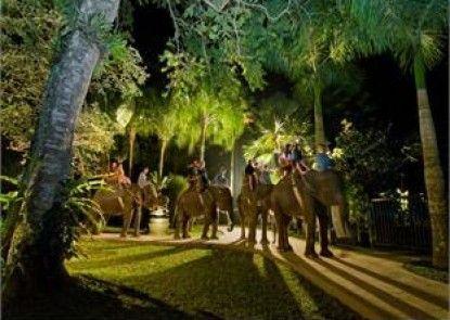 Elephant Safari Park Lodge Hotel Fasilitas Rekreasi
