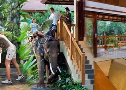 Elephant Safari Park Lodge Hotel Lain - lain