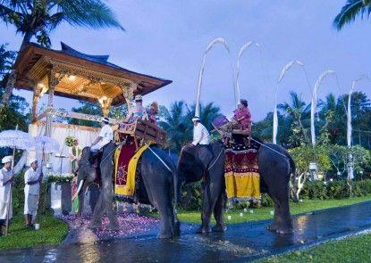 Elephant Safari Park Lodge Hotel Pernikahan