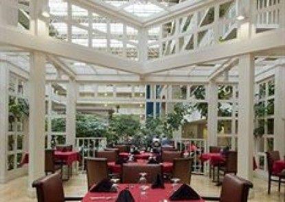 Embassy Suites Atlanta Airport Teras