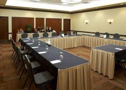 Embassy Suites Atlanta - Buckhead Teras