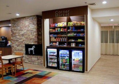Fairfield Inn & Suites by Marriott Detroit Farmington Hills