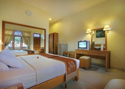 Febris Hotel & Spa Teras