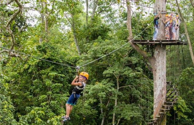 Flight of the Gibbon Zipline Canopy Tour Khao Kheaw (Depart from Pattaya)