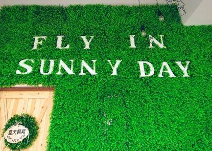 Fly in Sunnyday