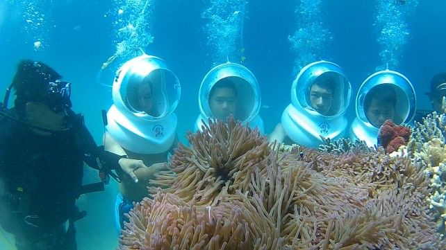 Full-day Snorkelling and Scuba Diving Activities at Mun Island