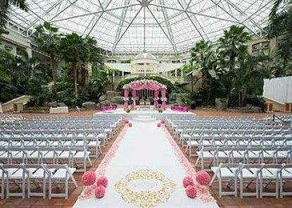 Gaylord Palms Resort & Convention Center Teras