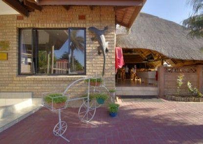 Gecko Inn Guest House