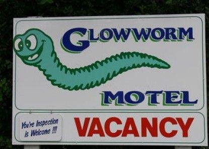 Glowworm Motel