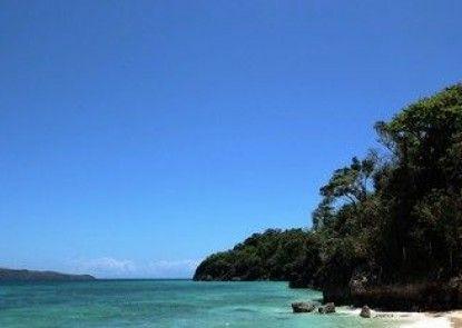 Green Monkey Resort