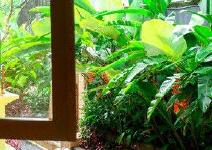Green View Widia