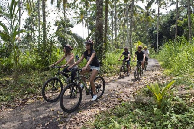 Half-day Mountain Cycling with Lunch and Transfers