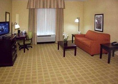 Hampton Inn Baton Rouge - Denham Springs Teras
