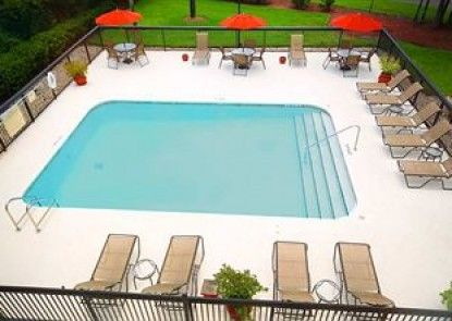 Hampton Inn Gainesville Teras