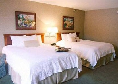 Hampton Inn Hotel Detroit/Belleville-Airport Area Teras