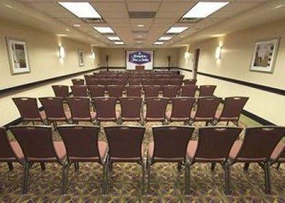 Hampton Inn & Suites Denver-Downtown Teras