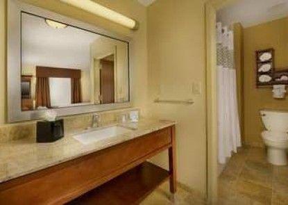 Hampton Inn and Suites Selma-San Antonio-Randolph AFB Texas