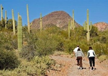 Hampton Inn Tucson-North