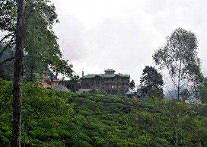 Heaven Seven Nuwara Eliya