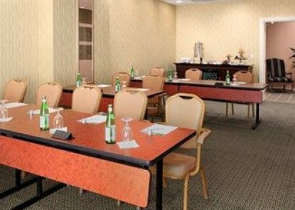 Hilton Baton Rouge Capitol Center Teras