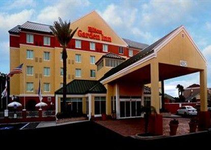 Hilton Garden Inn Tampa Northwest/Oldsmar Teras