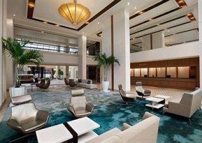 Hilton Miami Airport Teras