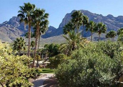 Hilton Tucson El Conquistador Golf & Tennis Resort Teras