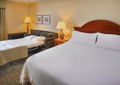 Hilton Garden Inn St. Louis/O\'Fallon