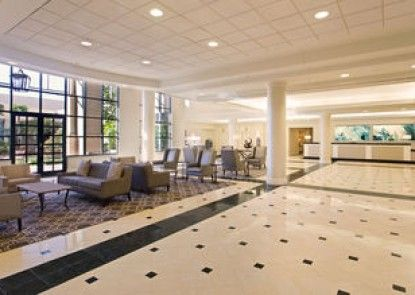Hilton New Orleans Airport
