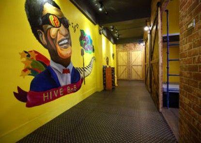 Hive bnb Capsule Inn Hualien