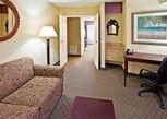 Pesan Kamar Suite, 1 Tempat Tidur King, Non-smoking di Holiday Inn Express Clearwater East - Icot Center